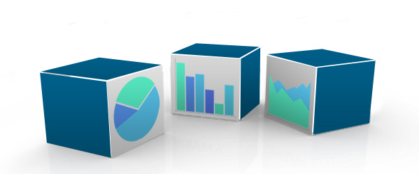 Medical Enquiry Application with easy to use report module